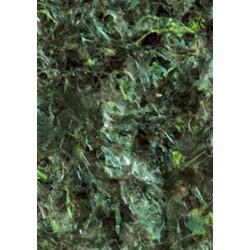 Green Marine Algae Food (листы водорослей поштучно)