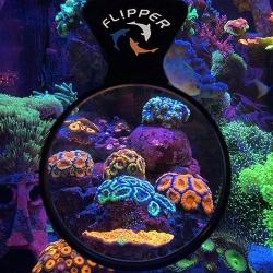 FLIPPER AQUARIUM VIEWER (увеличительное стекло-скребок)