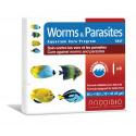 Prodibio Worms & Parasites (против червей и паразитов)