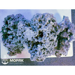 СРК - aquadecor reef plate